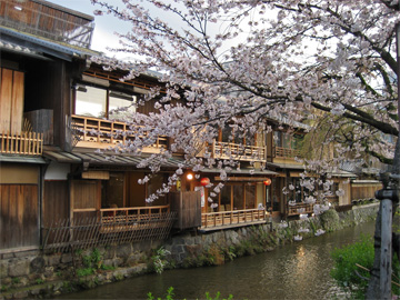 四条大橋へ向かって歩くと祇園の御茶屋さんが並んでいます。