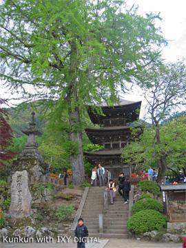 前山寺の未完の塔です。